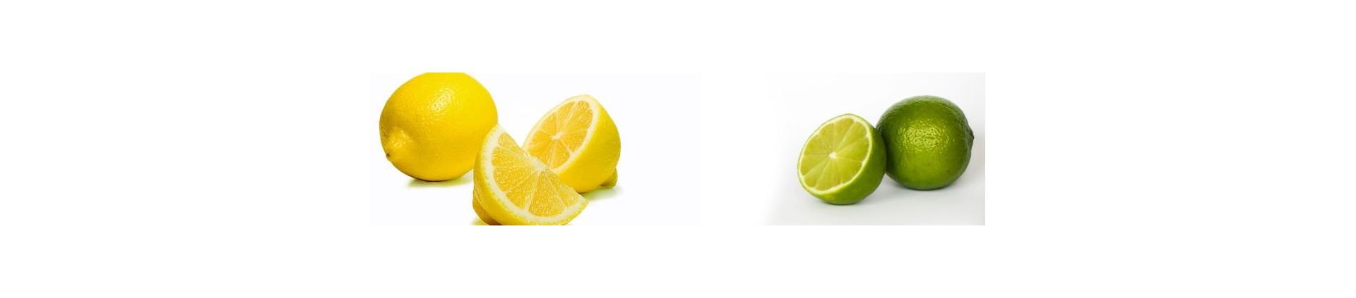 Comprar Vichy Catalán Lima Limón sin azúcar